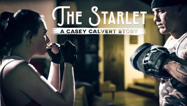 puretaboo-19-04-16-casey-calvert-a-casey-calvert-story.jpg